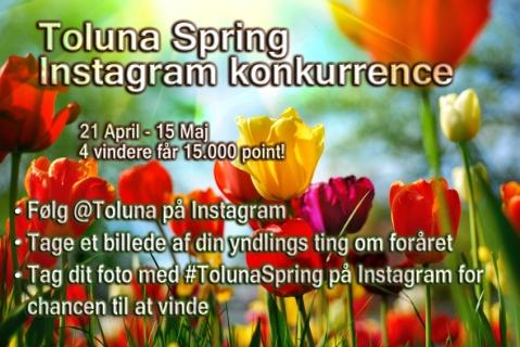 DK toluna-spring
