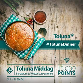 Instagram Toluna Dinner_DK